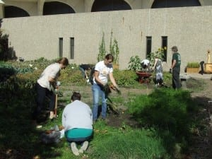 Volunteers picking vegetables and working the patch! / Alec Salloum