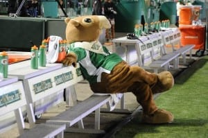 Warm the bench, Gainer./ Courtesy of the Saskatchewan Roughriders