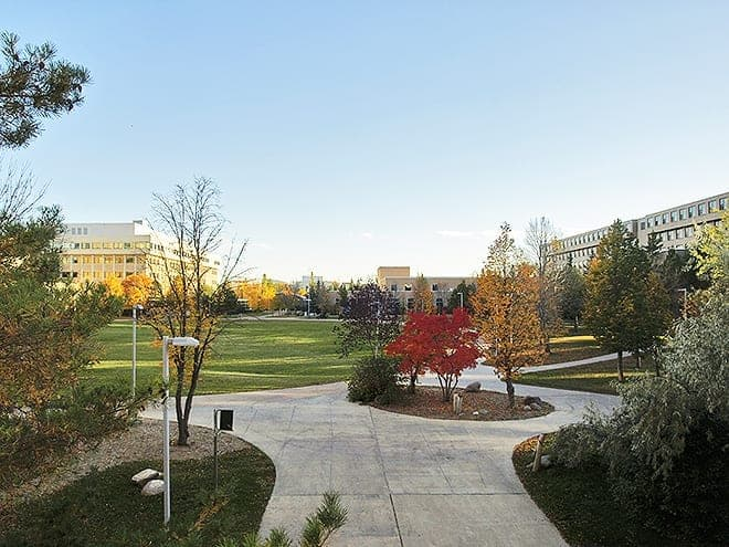 The campus is a beautiful place. Sometimes. From the right angle. Photo - Brett Neilsen